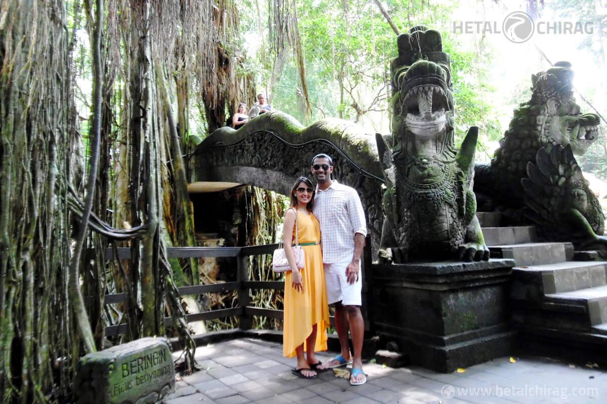 Ubud-Monkey-Forest,-Bali,-Indonesia | Chirag Virani | Hetal Virani