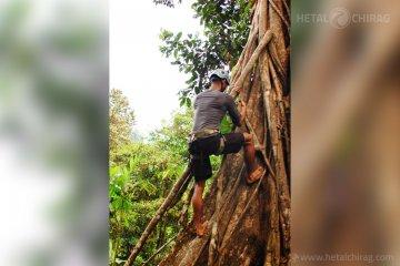 Brujo,-San-Jose,-Costa-Rica-- | Chirag Virani | Hetal Virani